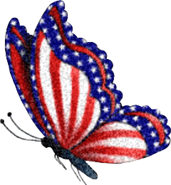 butterfly butterflywings america flag 4thofjuly