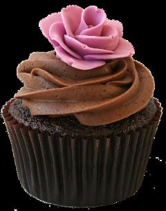 cupcake freetoedit