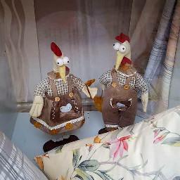 shopwindow chicken costumes bavariandress decoration