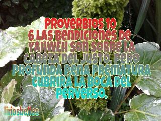proverbios sendingthewordofyahweh fromcostarica byliriosbellos faith