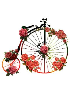 bycicle vintage retro flowers hipster