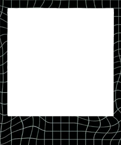 polaroid frame picture spiderweb black