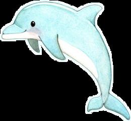 anime dolphin freetoedit