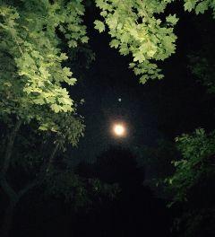 freetoedit moon nature photography
