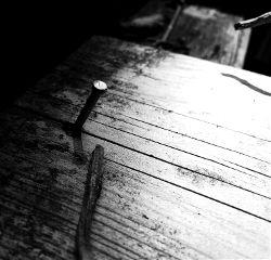 blackandwhite photography nail wood