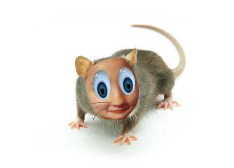 wapcartooneyes freetoedit remixme rat cartoon
