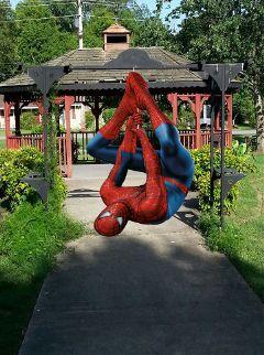 spiderman myedit myoriginalphoto photography spidermansticker freetoedit