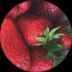 sticker transparent circle strawberry red