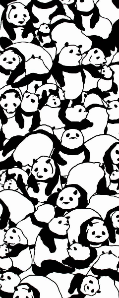 panda blackandwhite fondo freetoedit