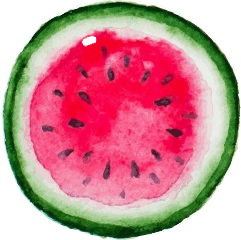 summer watermelon red fruit food