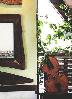 photography violin emotions