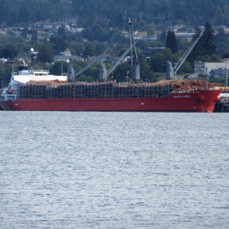 ship logs freetoedit