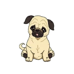 pug nala sweet puppy cute