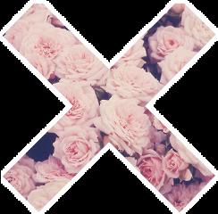 flower tumblr stickers freetoedit