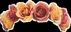 crown flower flowercrown princess girl