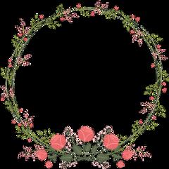flowers circleframe roundframe flowerframe frame