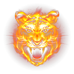 tiger fire flames ftestickers freetoedit