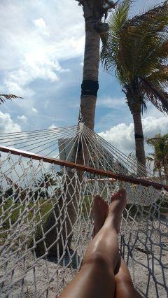 dpchammock hammock relax vacation beach