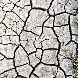 freetoedit drought photography picsart photooftheday