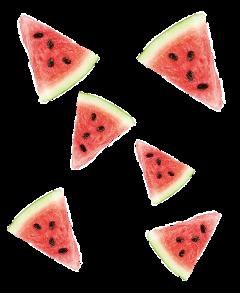 fruitstickers freetoedit ftewatermelon