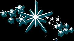 white star sparkle glitter shine