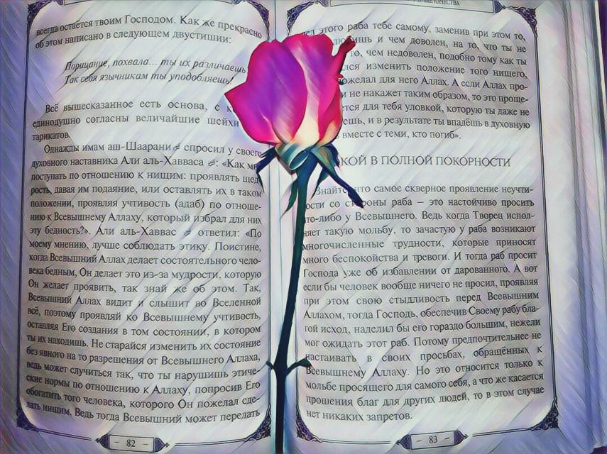 #FreeToEdi #disney#beautiful#rose#roses#flowersfollower#nature#design#animal#cat#love#Muslims#islam#hijabfashion#birthday#food#vintage#muslim#hijab#photography#cute#collage#beauty#birthday##baby #balloon #colorful #photography #бабочки #красота #любовь #лайк#котенок #hijabfashion#photo #photooftheday #photogrid #photoshoot #photographer #photos #photograph #photochallenge #photoftheday #photoaday #photoofday #photoday #pic #instagramanet #instatag #инстафото #инстаграманет #инстатаг #фото #фотосессия #фотограф #фотография #фотосет #фотодня #фотка #фотки #цвет #экспозиция #выдержка #искусство #heart#сердечки#wedding#свадьба #makeup #playboy #onelove #angelinajolie #outlinescontest #moodstickers #appsoftheday #donutwallpaper #remixed #remixit #выдержка #экспозиция #свадьба #сердечки #цвет #фотки #фотосет #фотодня #cooldad#lorde #DadMakeover #BodyPositive #app#renaissance sforyou #fathersday #gooutside #stretchtool#HappyEid#Bridges#салат#еда#праздник #mma #summercollage#FreeToEdit