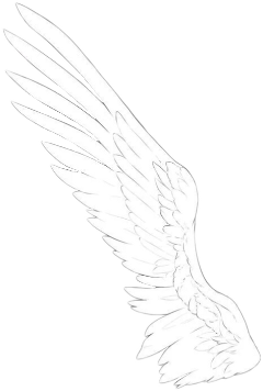 wing wings angel cool accessories