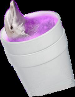 delfin purple trap codeína codeine