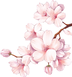 flower anime kawaii sakura freetoedit