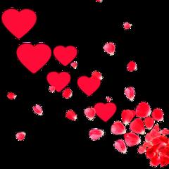 hearts heart flowers fleurs ftestickers