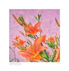 pink orange garden naturalbeauty whiteframe