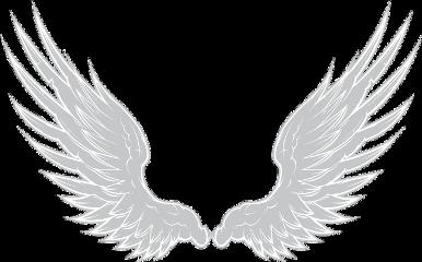 icon wings fansign profile iconprofile