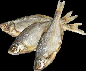 рыба freetoedit