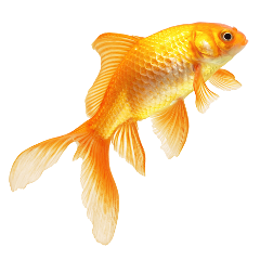 sticker fish goldfish sea pesce