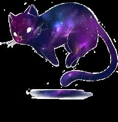 gato galaxy freetoedit