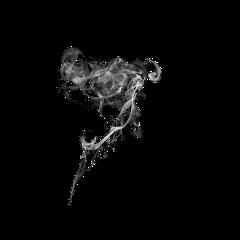 smoke black white freetoedit