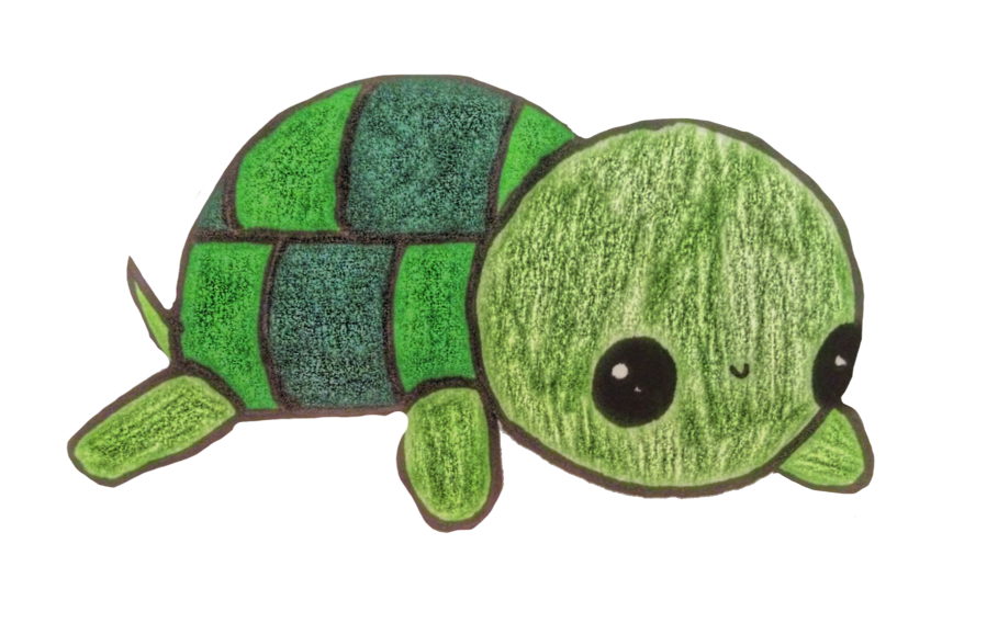 #kawaii #turtle @orangechicken931#freetoedit