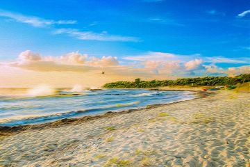 freetoedit naturephotography beach summer happy