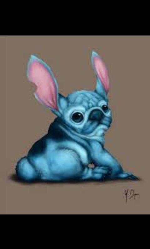 ##pug and stitch