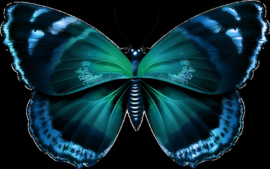 #sticker#butterfly