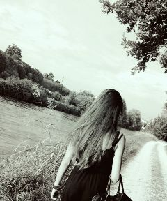 silence please sht paradise