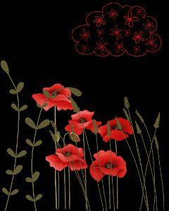 poppies cloud meadow flowers