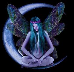 fairy moon wings beautiful freetoedit