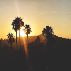 runyoncanyon california
