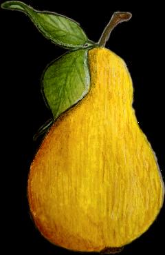 fruit fruits yellow pear freetoedit