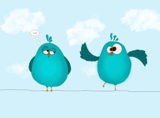 drawing cute birds color colorpaint freetoedit
