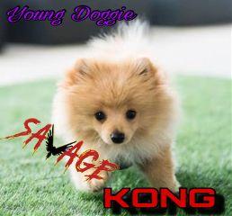 freetoedit kongdasavage logang4life loganpaul vloglife