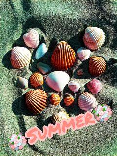 freetoedit summerswag shells