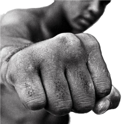 punch punching muhammadali action freetoedit