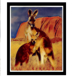 freetoedit travel collage australia popart